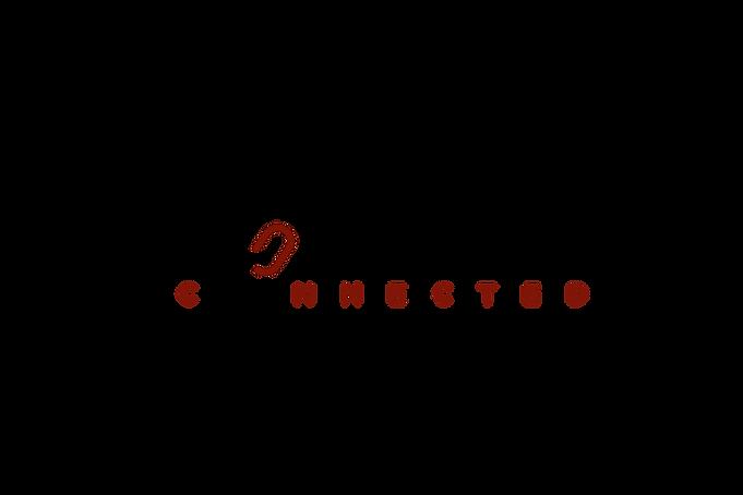 HALLNING CONNECT LOGO3.png