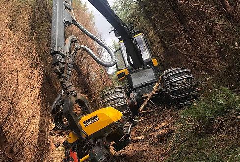 Timber Harvester.jpg