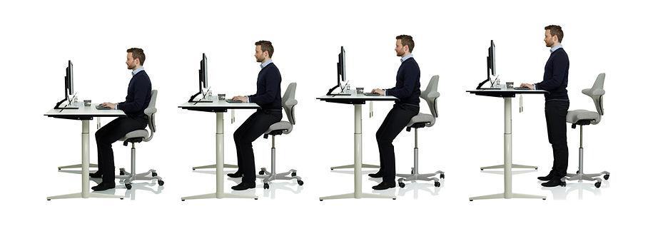 HALLNING-SIT-STAND.jpg