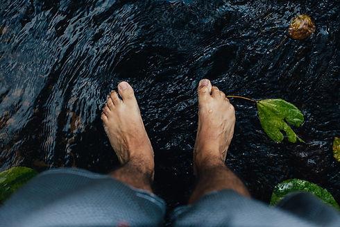 feet-2616858_1280.jpg