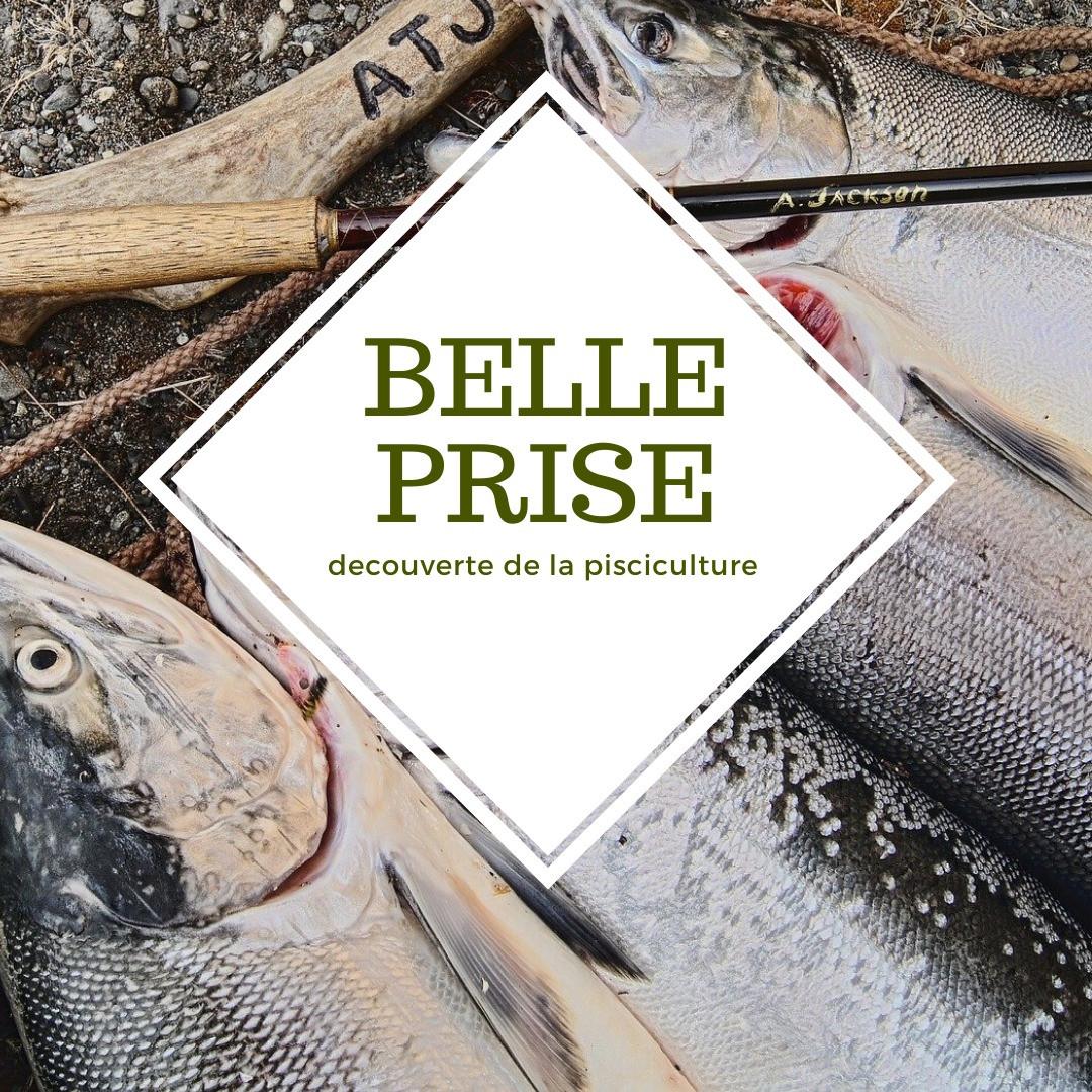 BELLE PRISE