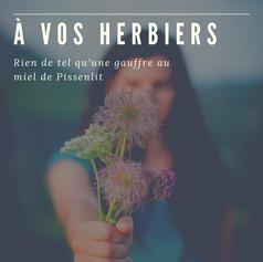 A VOS HERBIERS