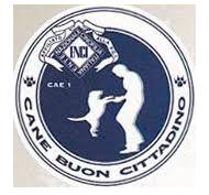 cae-1 logo.png