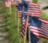 Row of USA Flags.jpg