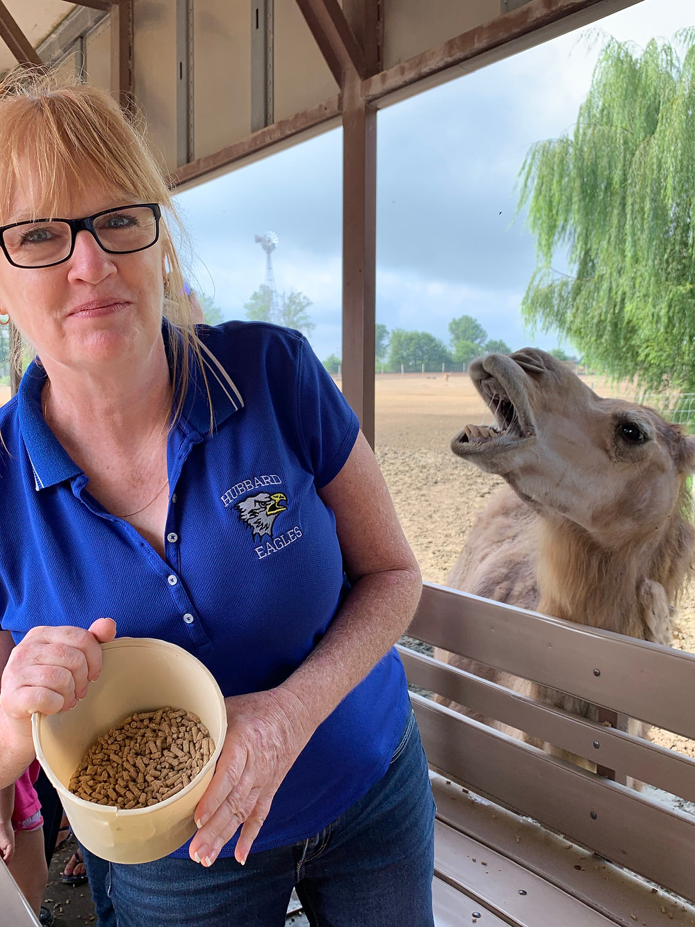 Teacher with animal food while animal waits in background