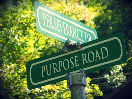AGAINST THE ODDS: Perseverance of Purpose