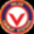 VALOR COMBAT SYSTEMS LOGO PNG_edited_edi