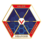 valor logo GOOD TIMINGS.v4-01.png