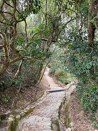 Hiking to reservoir feb 2020   2.jpeg