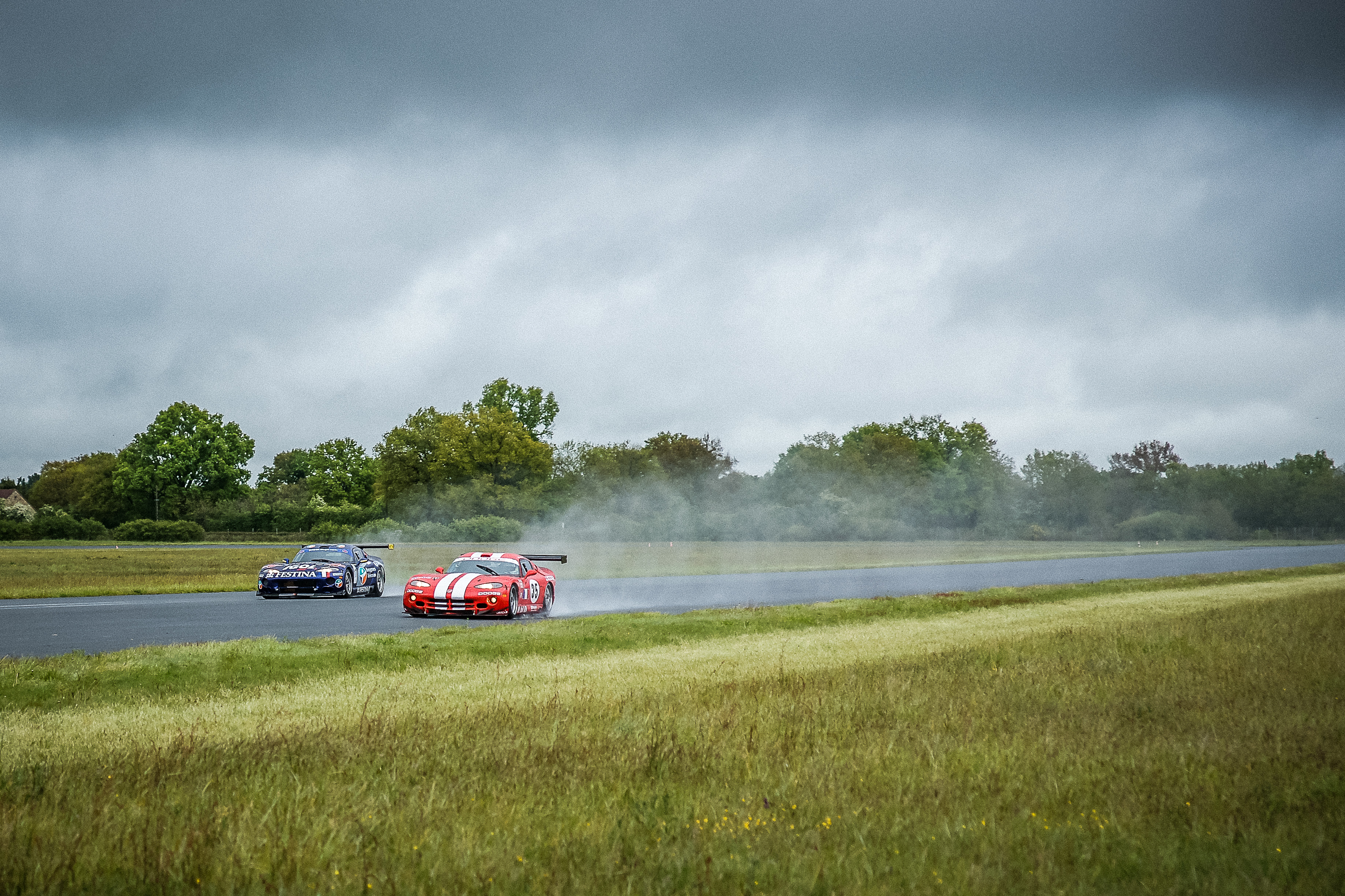 Viper auf dem Race Track