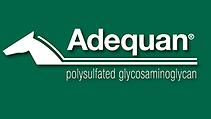 AdequanLogo.png