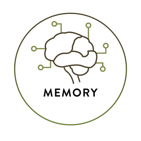 Memory_The Science Big Circles & solo ic