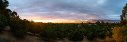 Prospect Park Panoramic