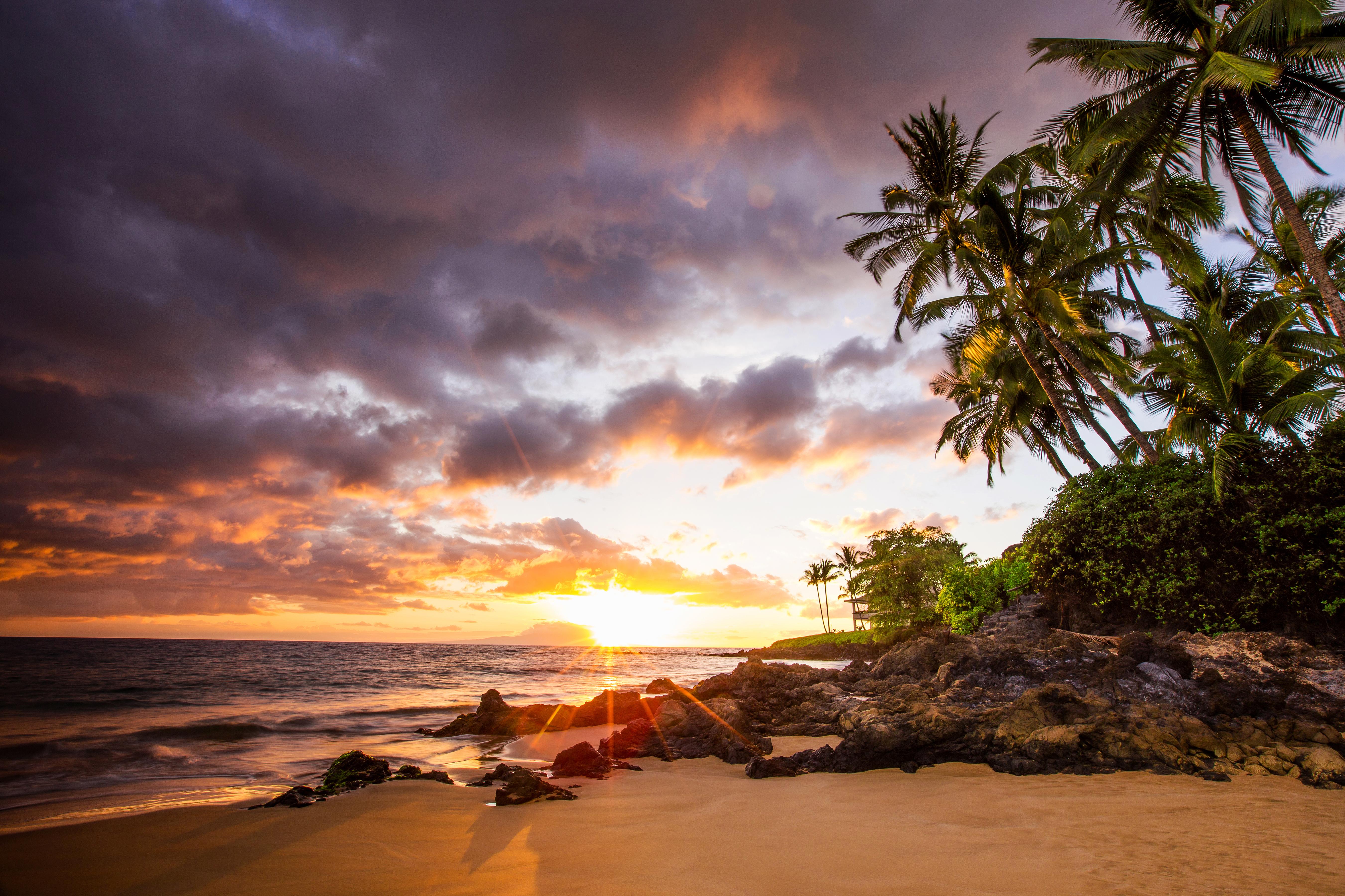 Maui Naked