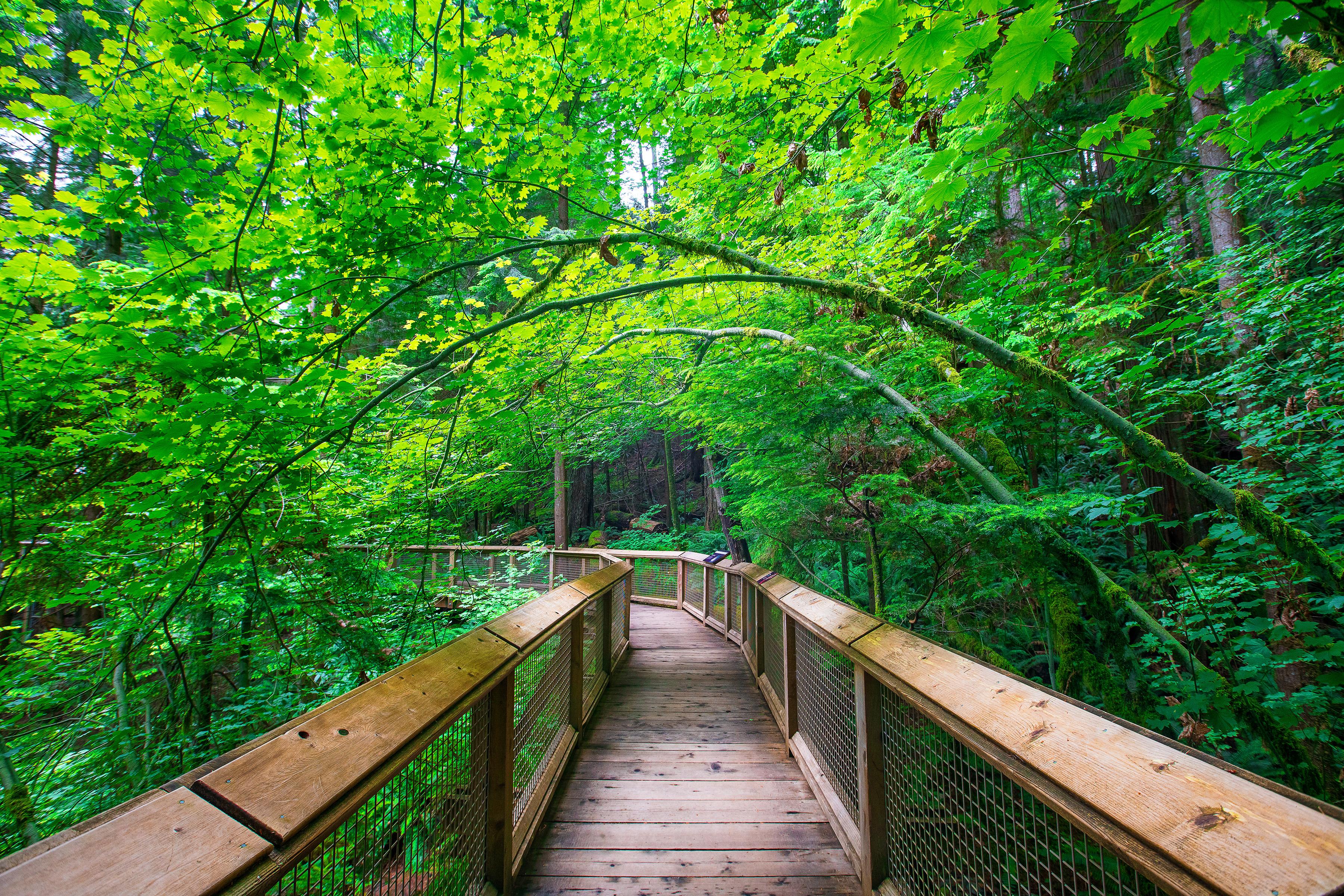 Vancouver Path