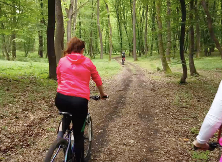 Cu bicicleta prin paduri