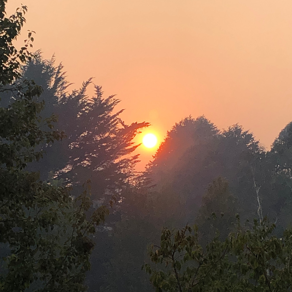 A smoky sunrise makes the sun look like a ball of flames