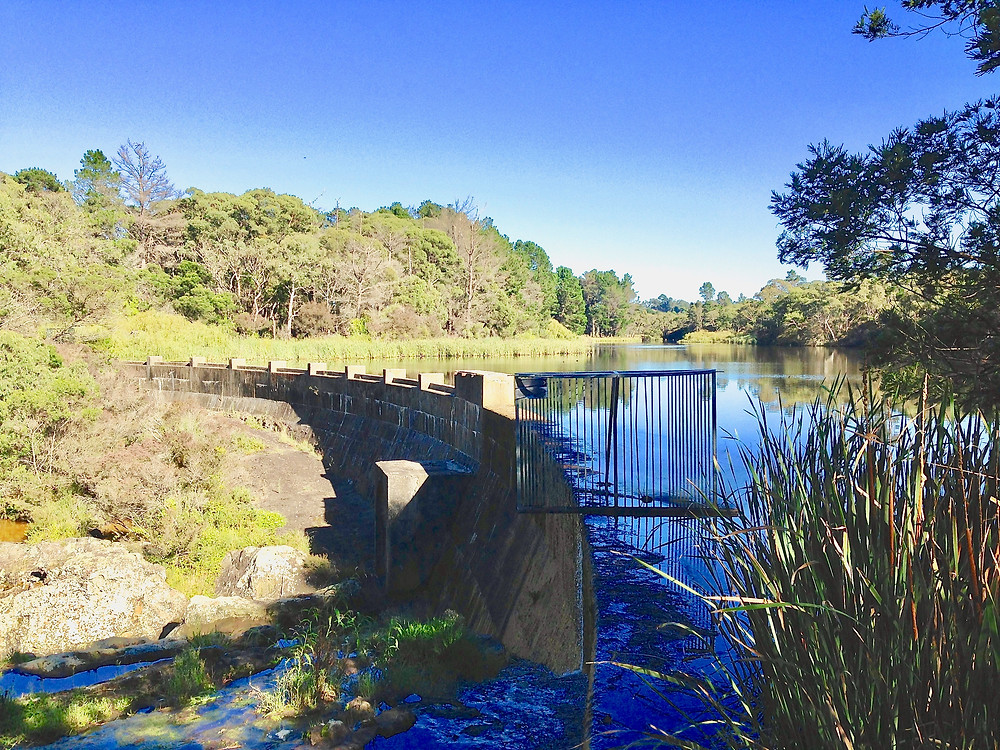 accommodation in Berrima- Box Vale Walking Track Mittagong Water Reservoir