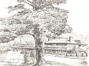 Cedric Emanuel sketches of Berrima