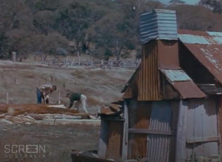 Oldbury Cottage - How an authentic Australian timber slab hut was built