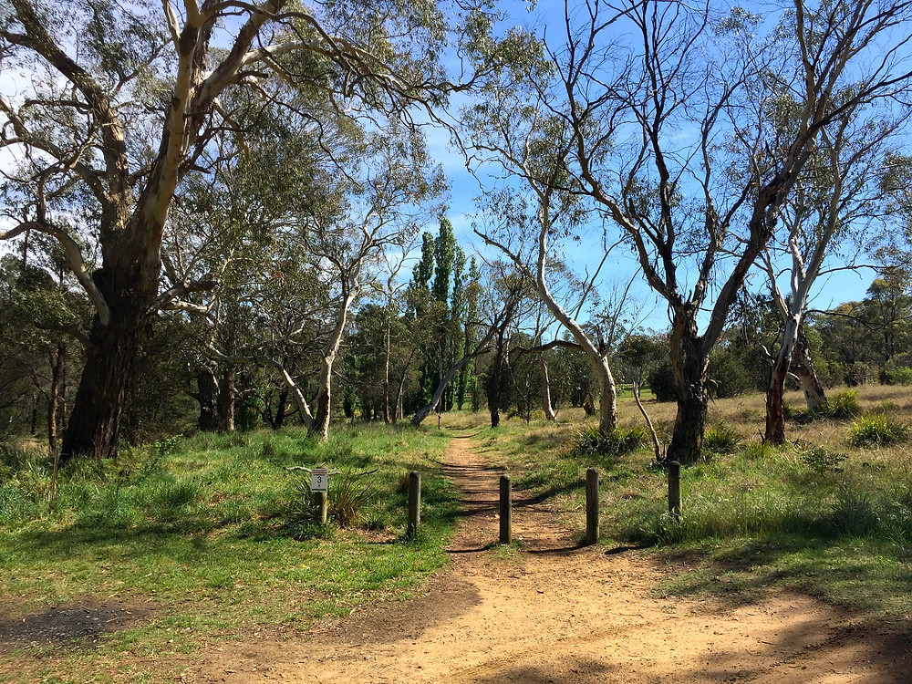 accommodation in Berrima- Start of the German River Walk Track