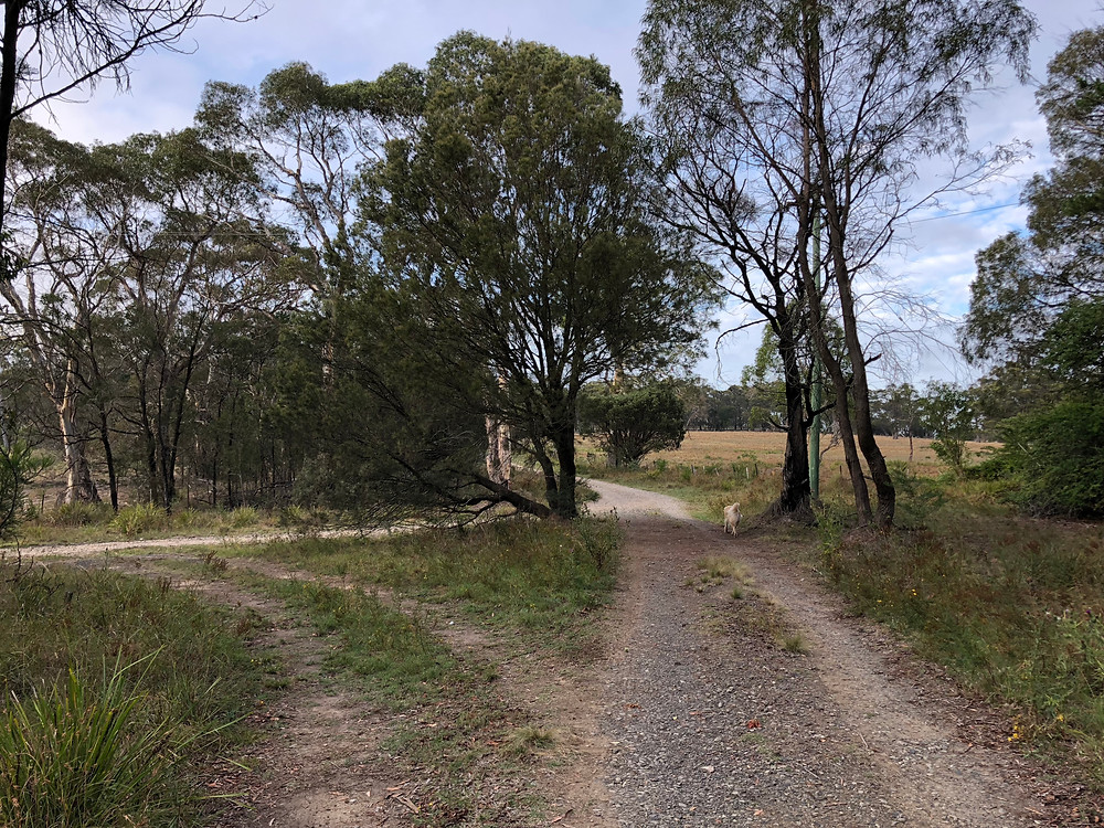 accommodation in Berrima- Intersection of Burwan and Odessa Streets, Berrima