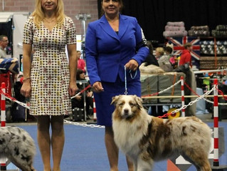 Int.Dogshow Lovanium Trophy