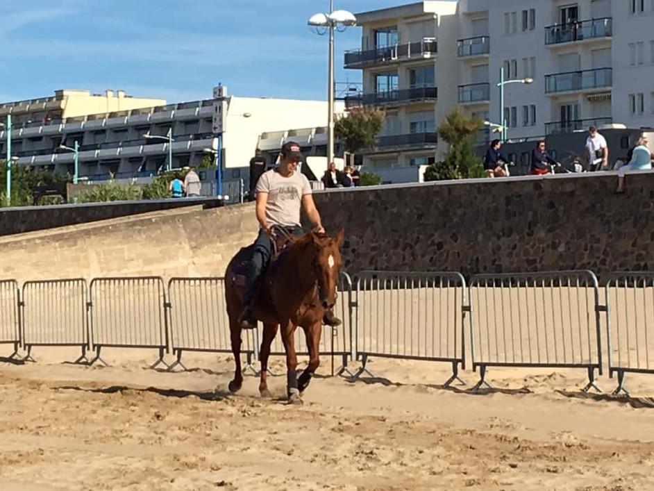 Caval Océane_HLV.jpg.jpg