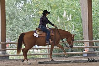 horse land valley_activité.jpg