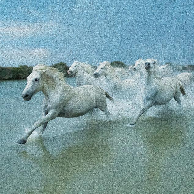 Galloping horses (after Seurat)