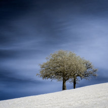 Isolation, Infrared