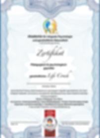 VIP Coach Zertifikat_Web.jpg