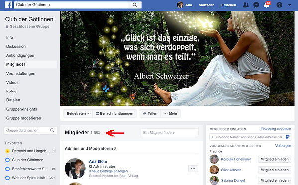 "fb-Gruppe ""Club der Göttinen""_Feb.2019.jpg"
