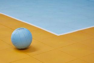 volleyball+court (1).jpg