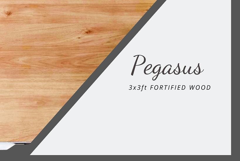 PEGASUS Dancefloor