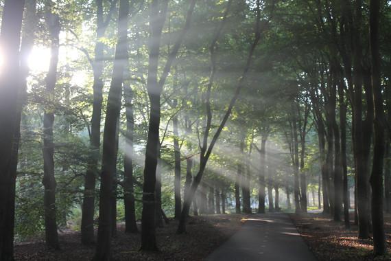 Lighting the ways, The Netherlands