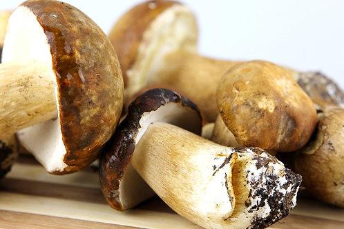 Cogumelos Porcini