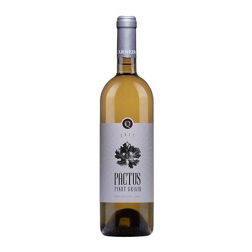 Verdicchio 75cl -Vinho Branco