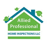Allied Professional Logo pdf copy.png