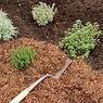 Composts barks grits.jpg