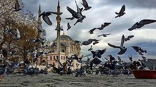 12.02.2016 - Ortaköy