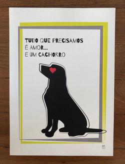 Cão 3