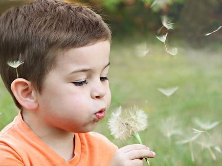 Encouraging Curiosity in Your Child