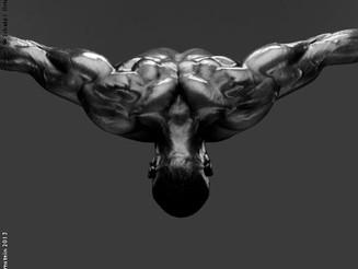 Howard Shatz, la perfezione del corpo umano