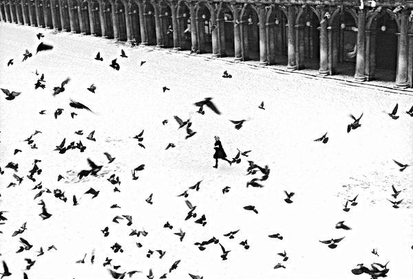 Gianni Berengo Gardin fotografo