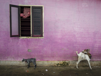 """""""Where tomorrow is yesterday"""", Alex Webb in mostra a Milano"""