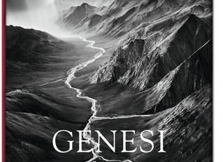 Libri di fotografia : Genesi di Sebastiao Salgado