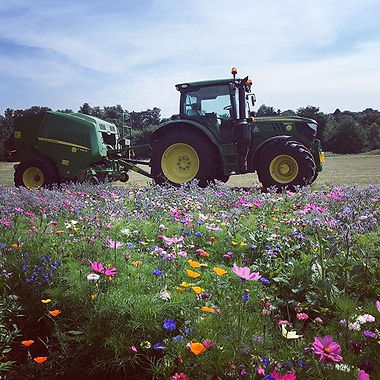 Environmental Tractor Work Surrey