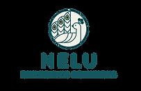Nelu Diversified Solutions Logo