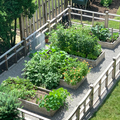With all the goodies in this garden, we expecet a dinner invite soon!